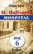 St. Hallvards hospital 6 - Sviket