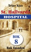 St. Hallvards hospital 8 - Bak fasaden